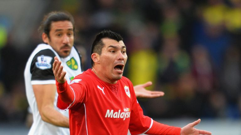 Medel made 34 appearances for Cardiff