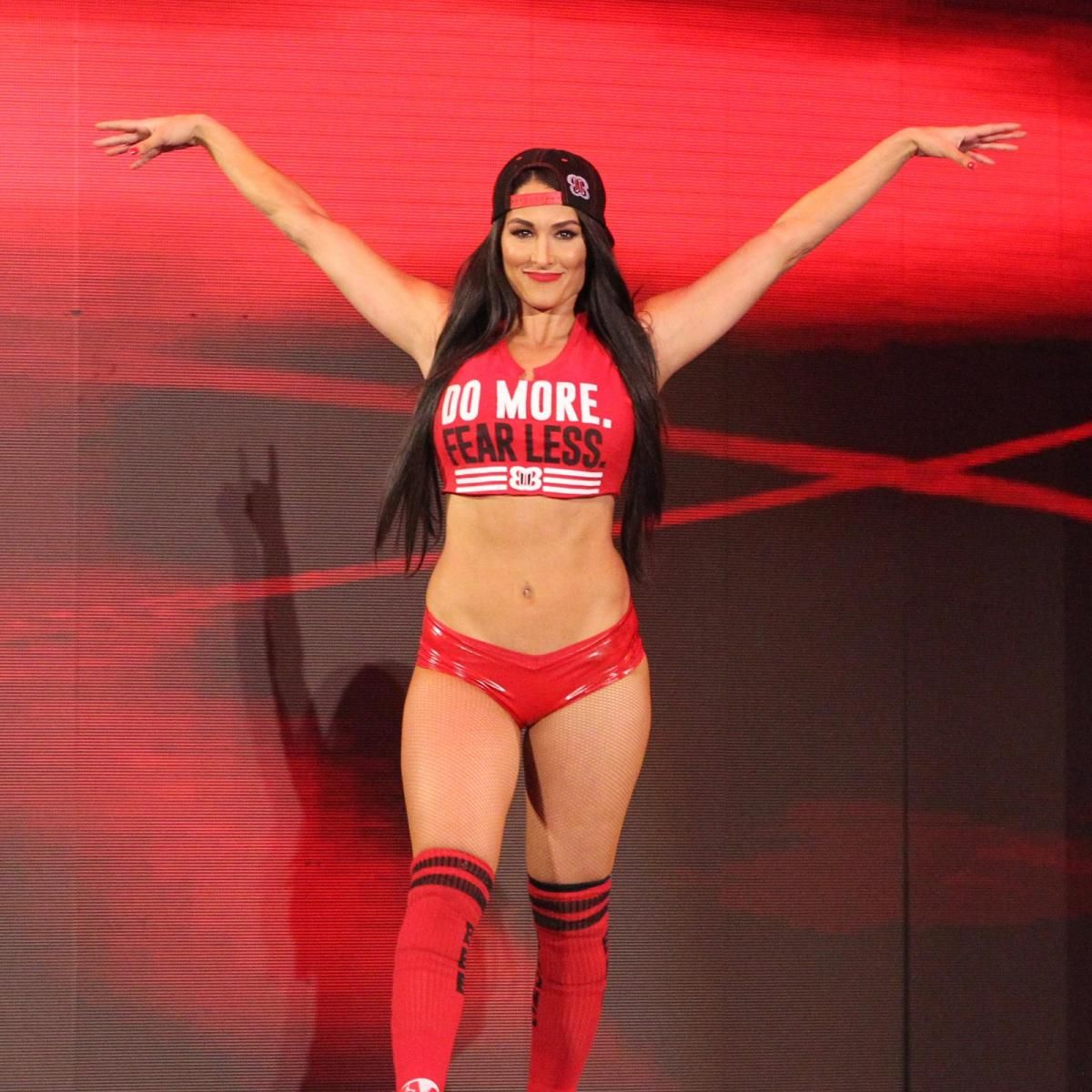 Image result for nikki bella