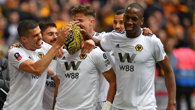 Raul celebrates a goal for Wolves against Watford in the FA Cup