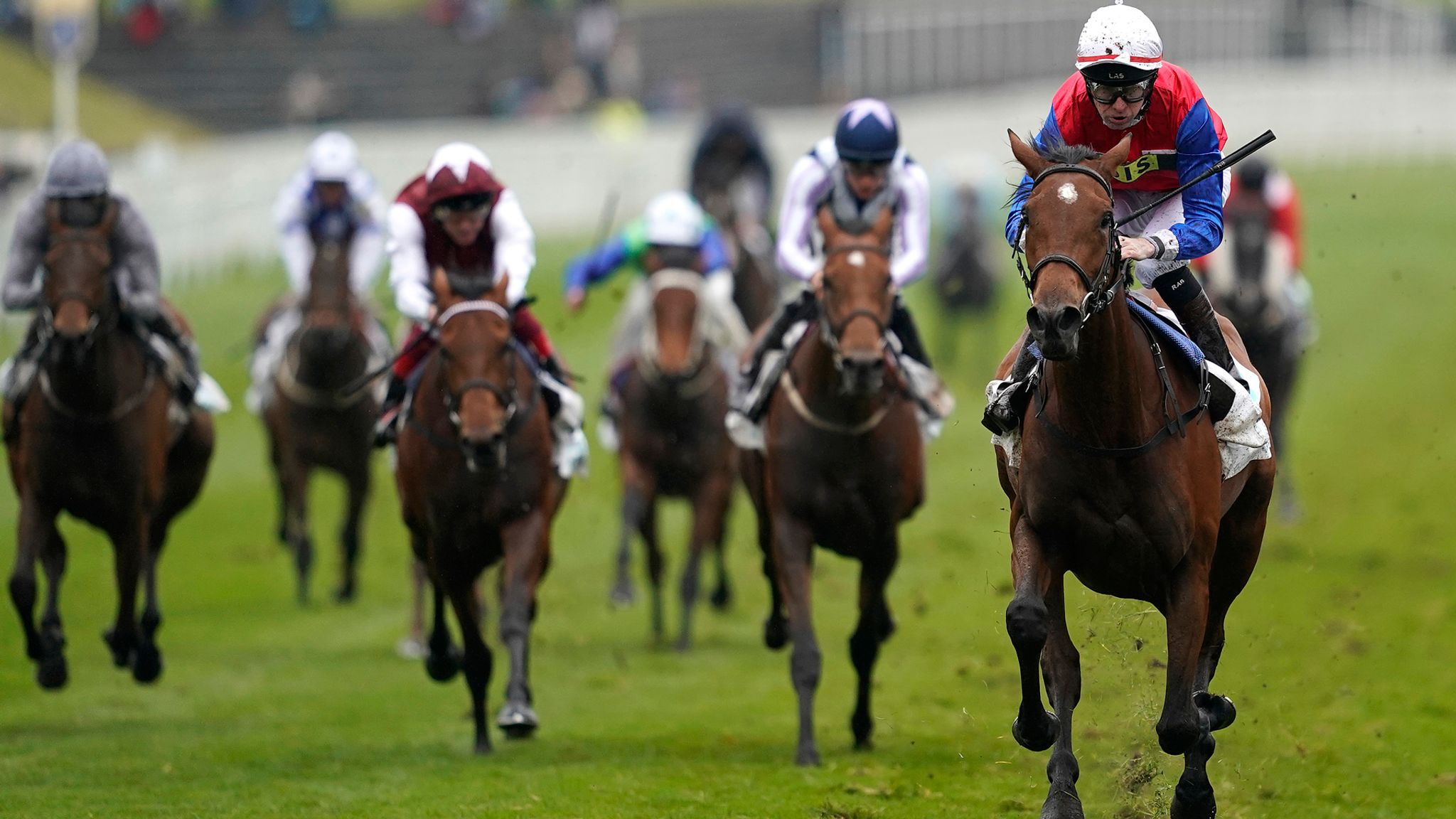 Alex Hammond previews the Champion Stakes at Ascot