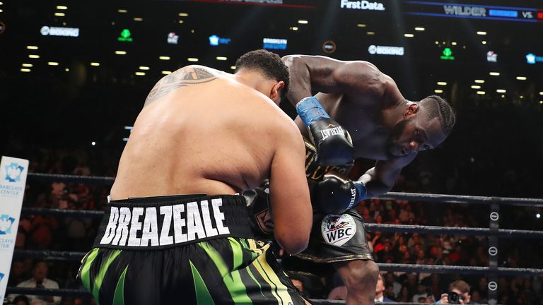 Wilder knocked out Dominic Breazeale earlier this month