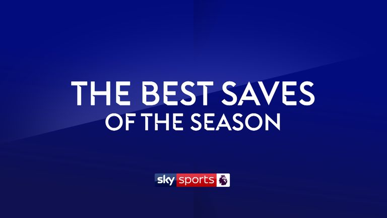 PL Saves of the Season