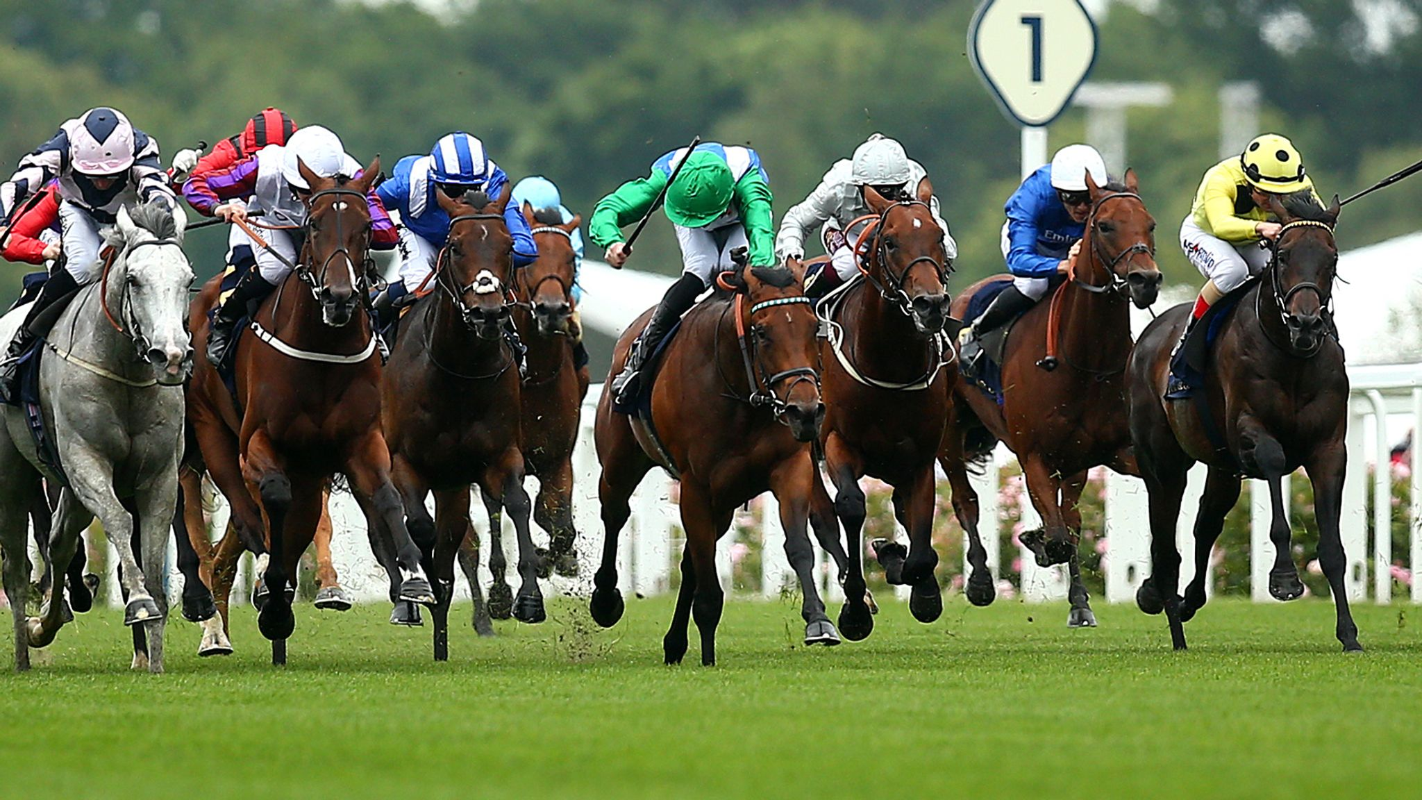 Hayley Moore previews the British Champions Sprint Stakes at Ascot