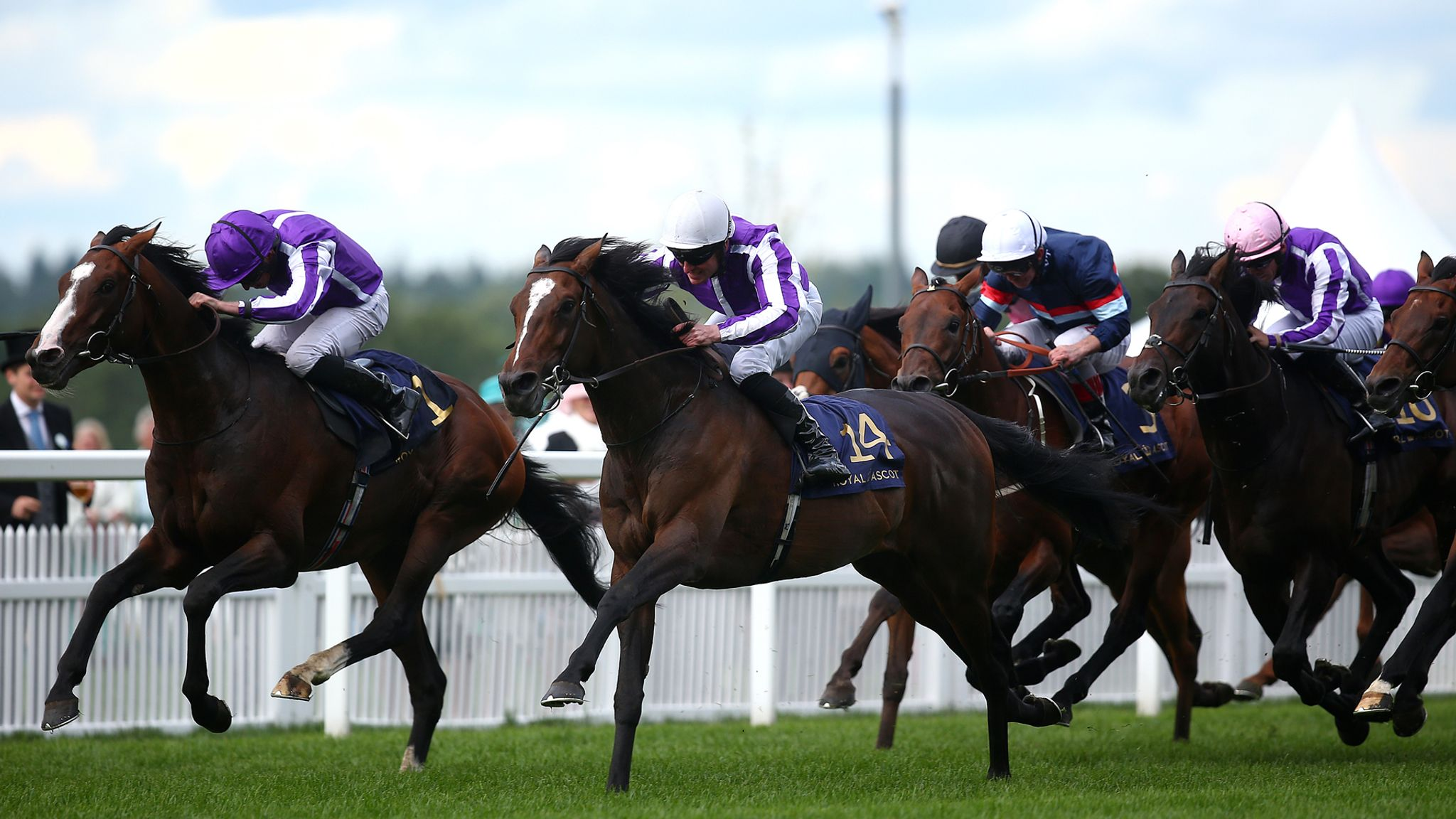 Mick Fitzgerald previews the Long Distance Cup at Ascot