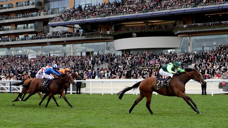 Settle For Bay winning the Royal Hunt Cup