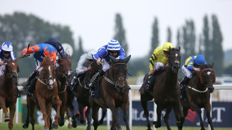 Tony Bloom bids for Northumberland Plate double