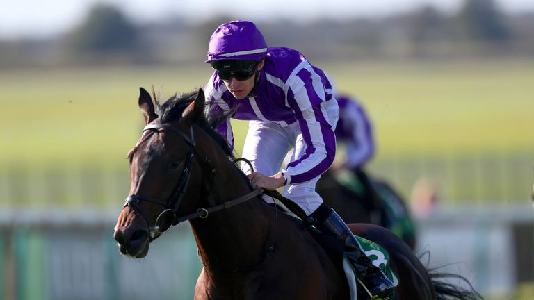 Ten Sovereigns  - reverts to sprinting in Commonwealth Cup