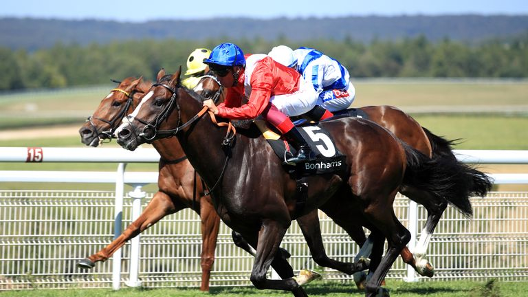 Regal Reality in winning action at Goodwood