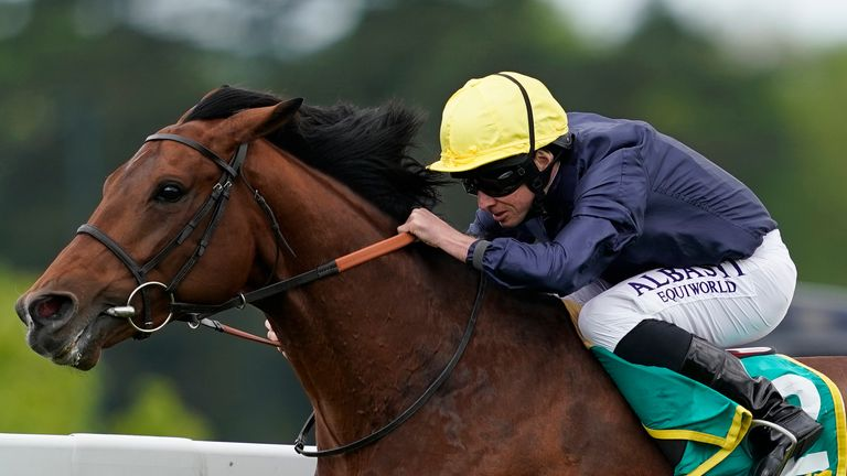 Crystal Ocean  - faces eight rivals at York