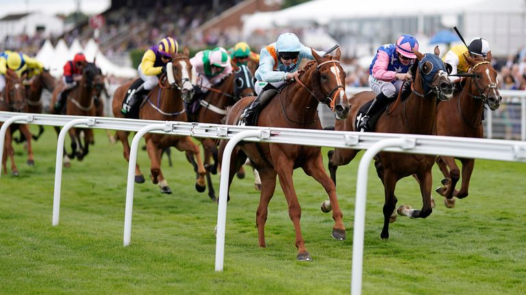 Timoshenko wins at the Goodwood from Seinesational