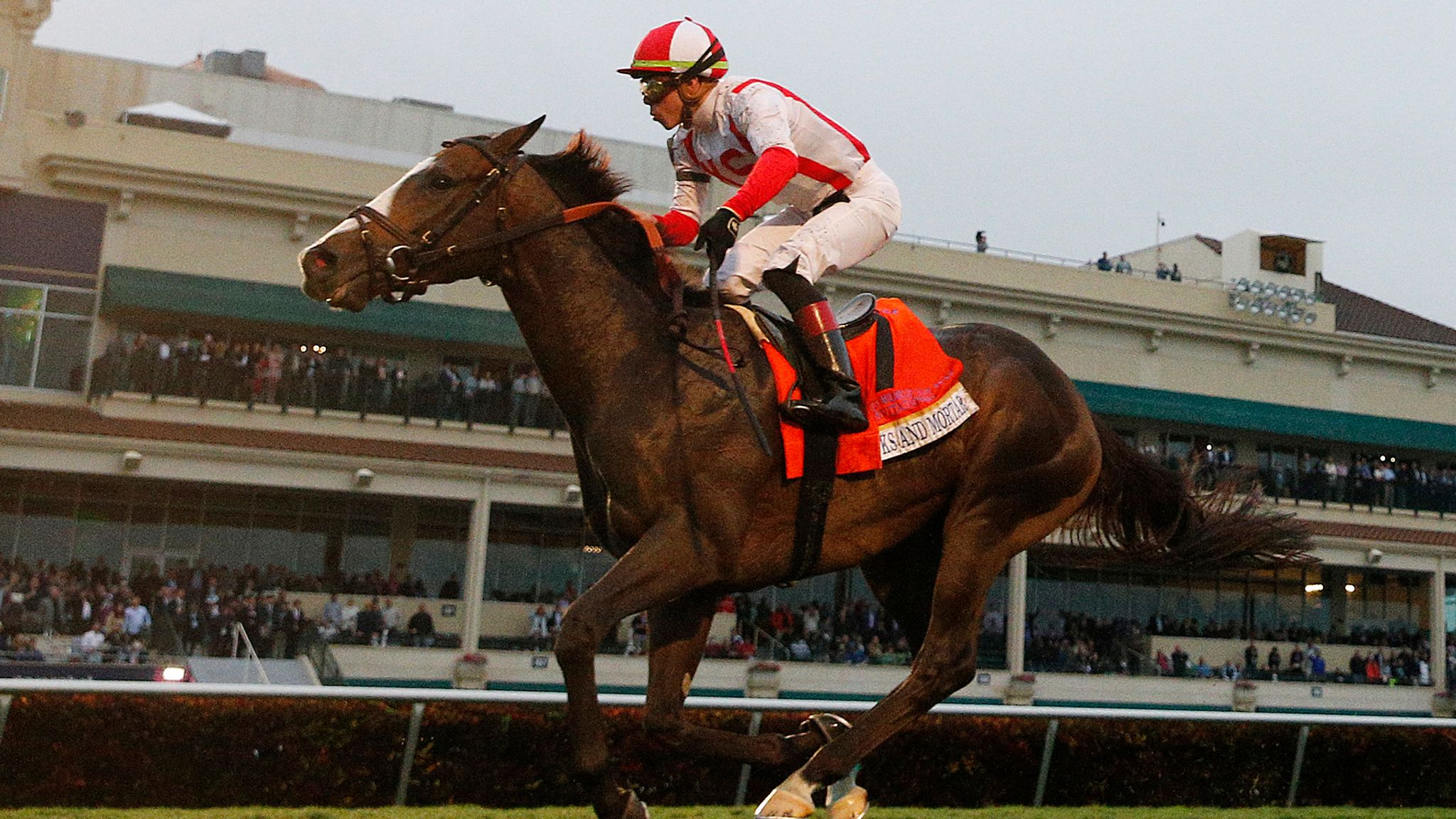 Chad Brown in Grade One clean-sweep at Arlington
