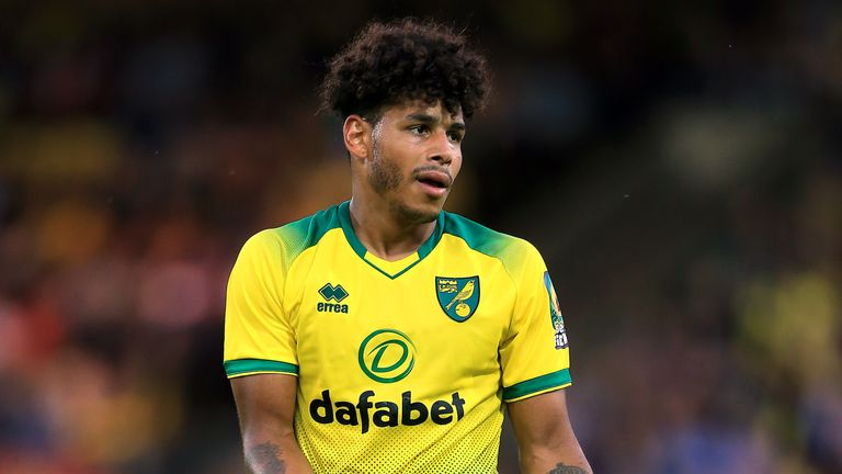 Onel Hernandez in action for Norwich City