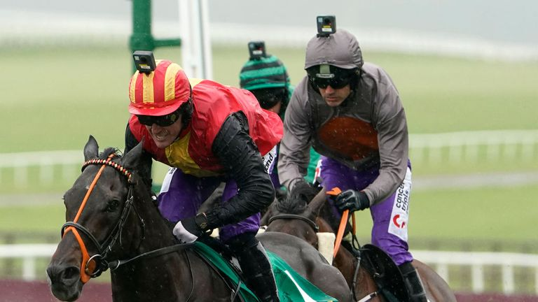 Quizical wins at the Curragh under Sir Anthony McCoy