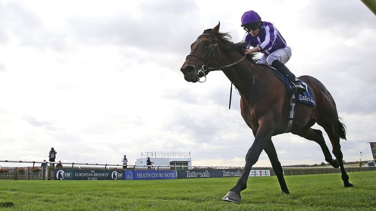 Wichita ridden by Ryan Moore wins The Tattersalls Stakes during day one of The Cambridgeshire Meeting at Newmarket Racecourse. PA Photo. Picture date: Thursday September 26, 2019. See PA story RACING Newmarket. Photo credit should read: Nigel French/PA Wire.