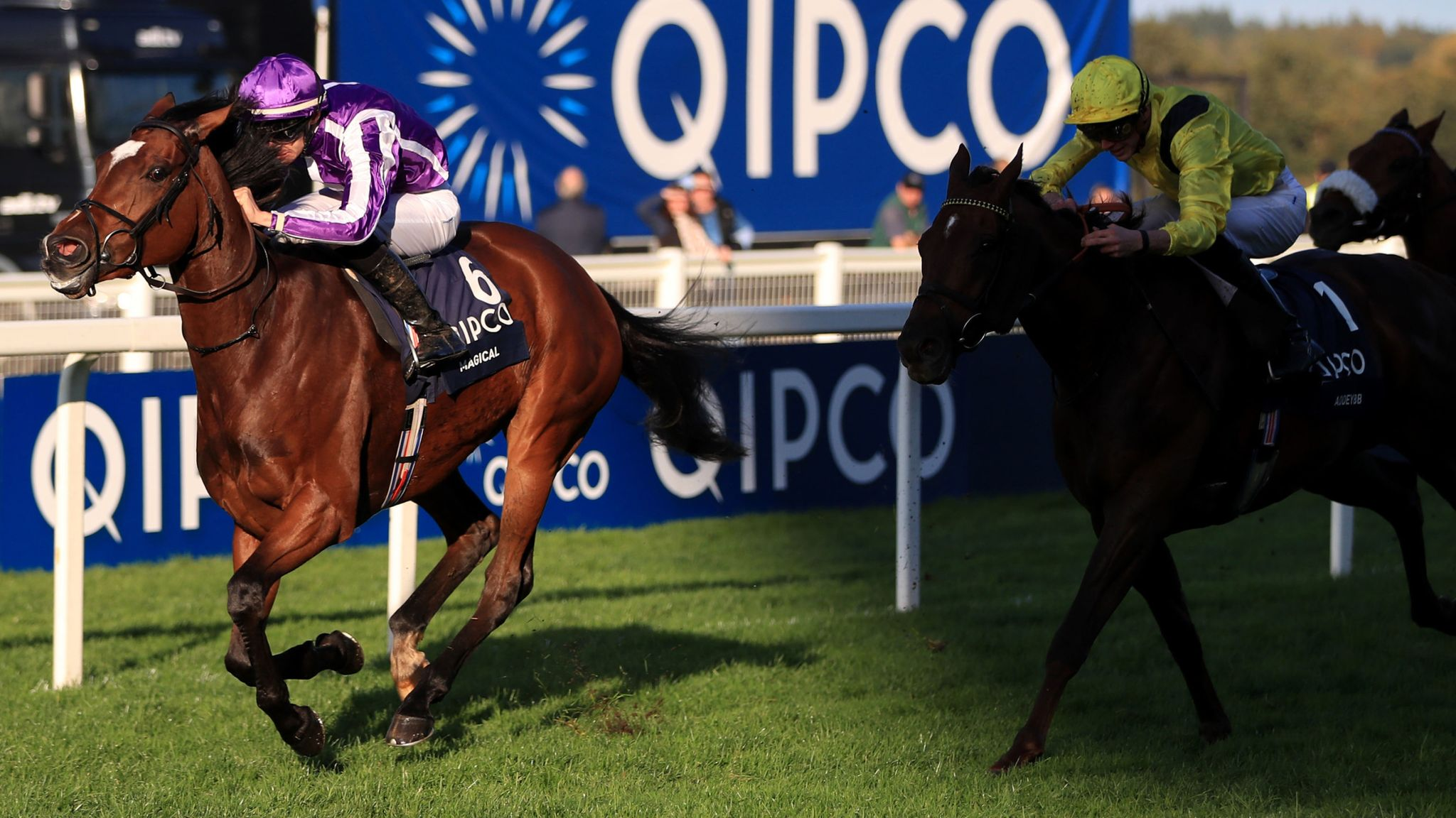 Magical claims Qipco Champion Stakes prize