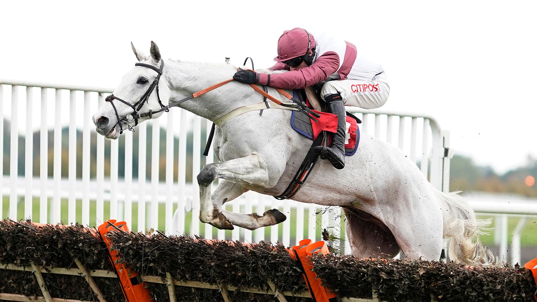 Big plans for Silver Streak after Kempton victory