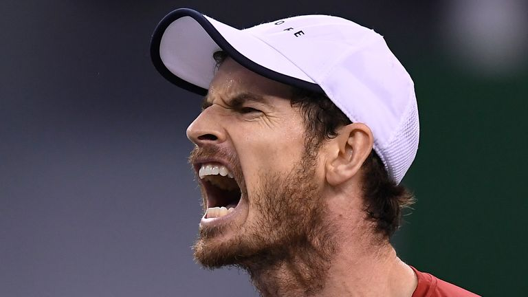 Andy Murray roaring mid-match