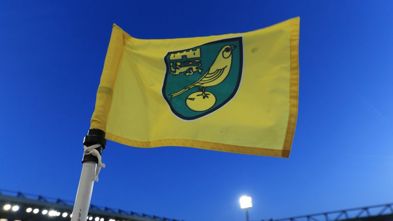 General view of Norwich City flag at Carrow Road