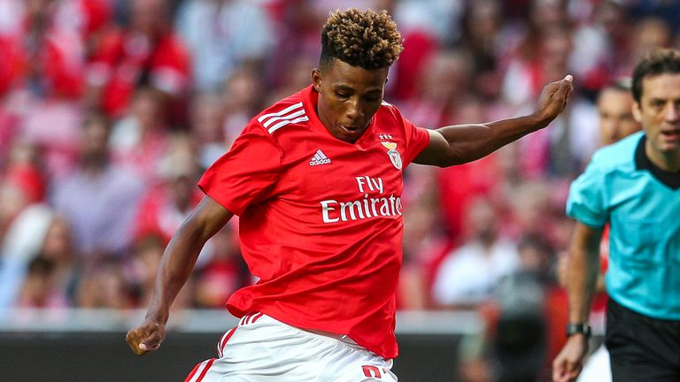 Gedson Fernandes of SL Benfica in action during the Liga NOS match between SL Benfica and Rio Ave FC at Estadio da Luz on November 2, 2019