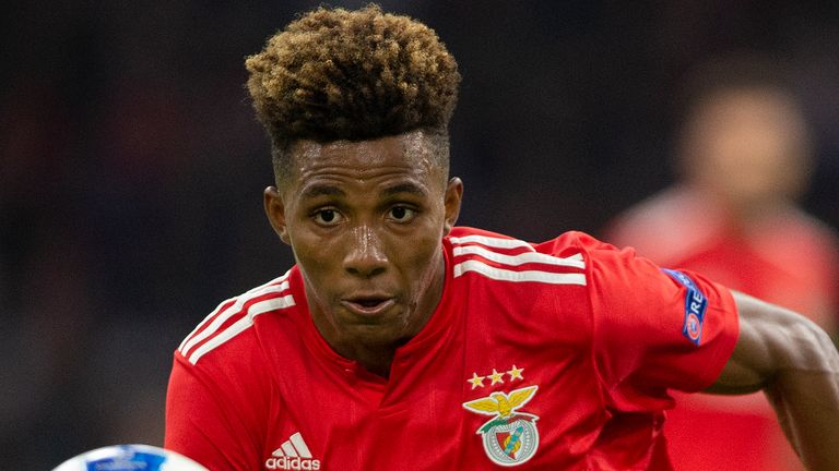 Tottenham sign Benfica's Fernandes on 18-month loan deal