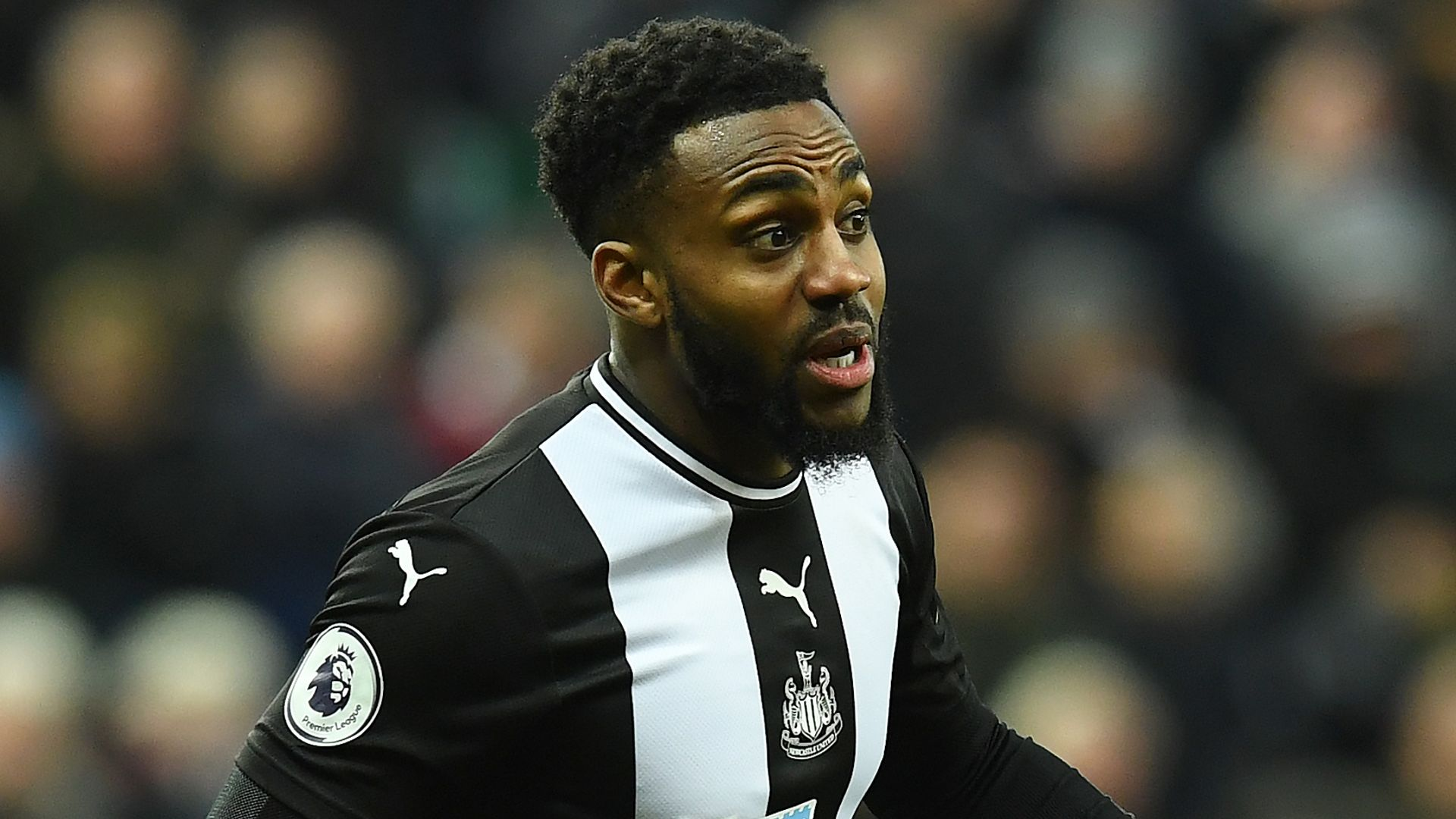 Spurs and Newcastle in talks to extend Rose loan