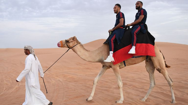 Pierre-Emerick Aubameyang and Alexandre Lacazette ride on a camel during Arsenal's mid-season break in Dubai