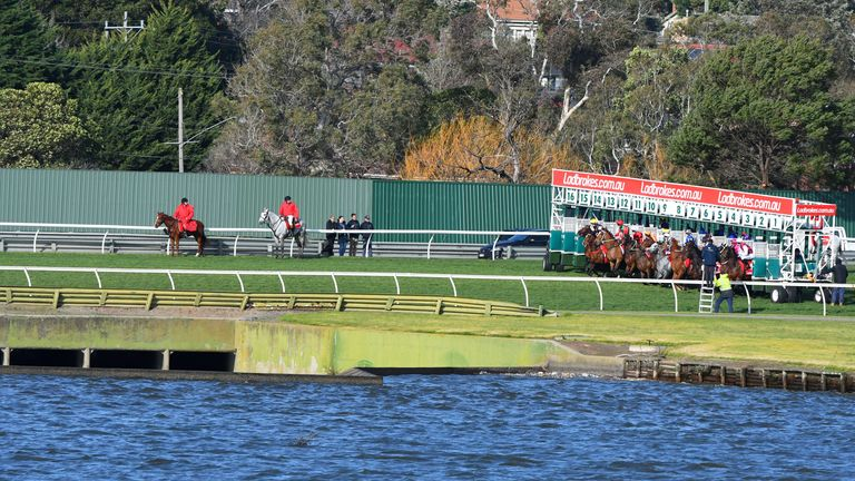 horse jumping out of barriers at start  at Sandown Lakeside in Victoria