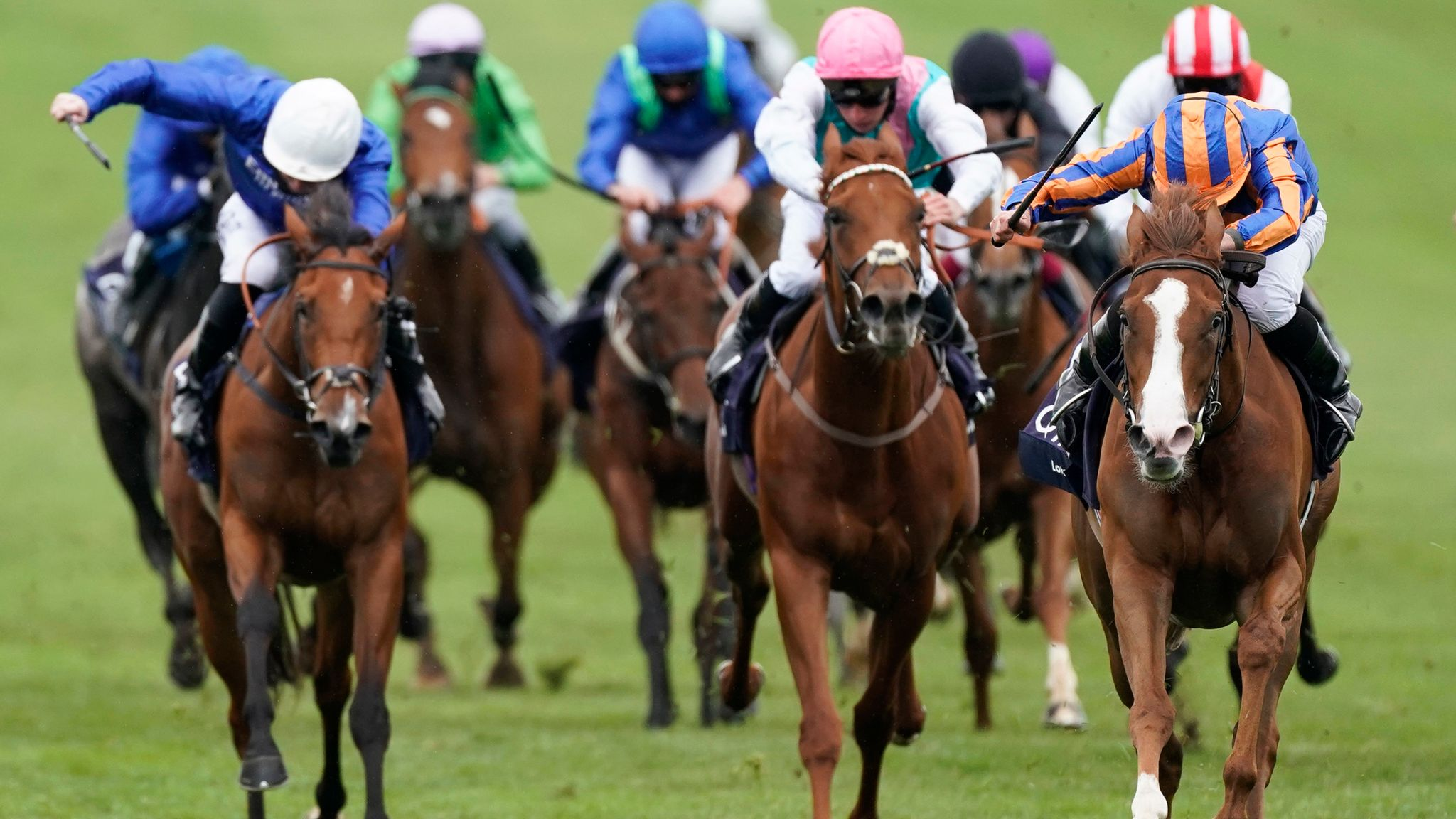 Irish 1000 guineas betting 2021 nfl bitcoins wiki nl alawieten