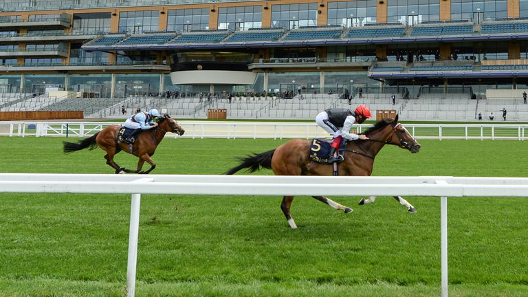 Frankly Darling lands the Ribblesdale