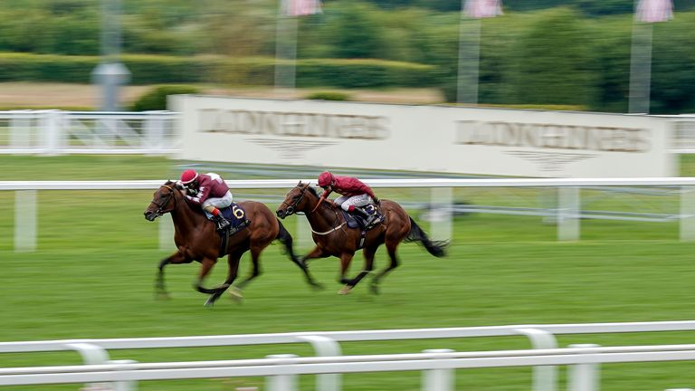 Golden Pal and Andrea Atzeni (left) were ultimately pipped close home in the Norfolk Stakes