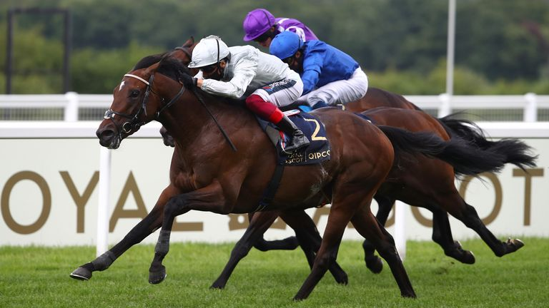 Palace Pier wins the St James's Palace Stakes at Royal Ascot