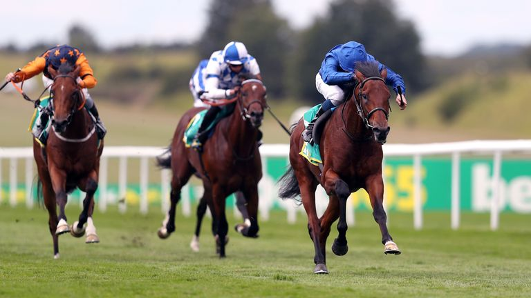Master Of The Seas impresses in the Superlative Stakes
