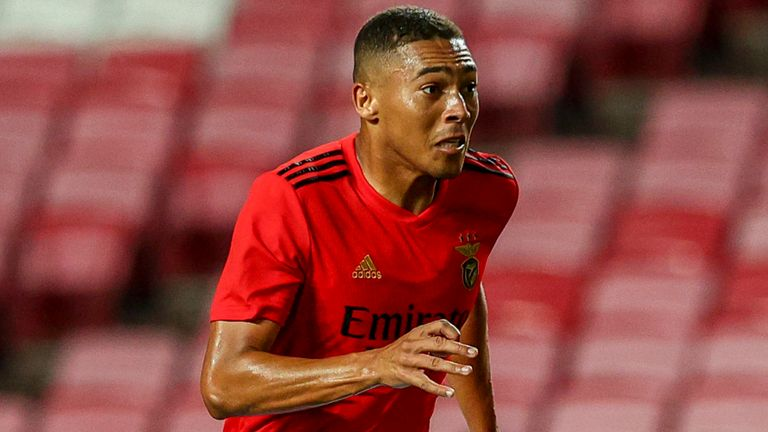 Carlos Vinicius Tottenham Agree Deal To Sign Benfica
