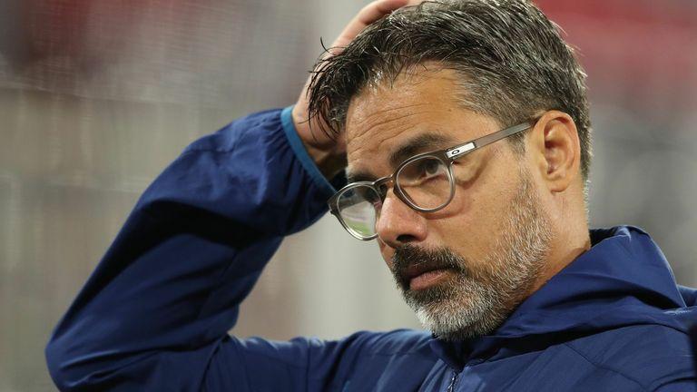 David Wagner has been relieved of his duties as Schalke boss
