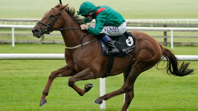 Christophe soumillon french champion hurdle betting teasers sports betting