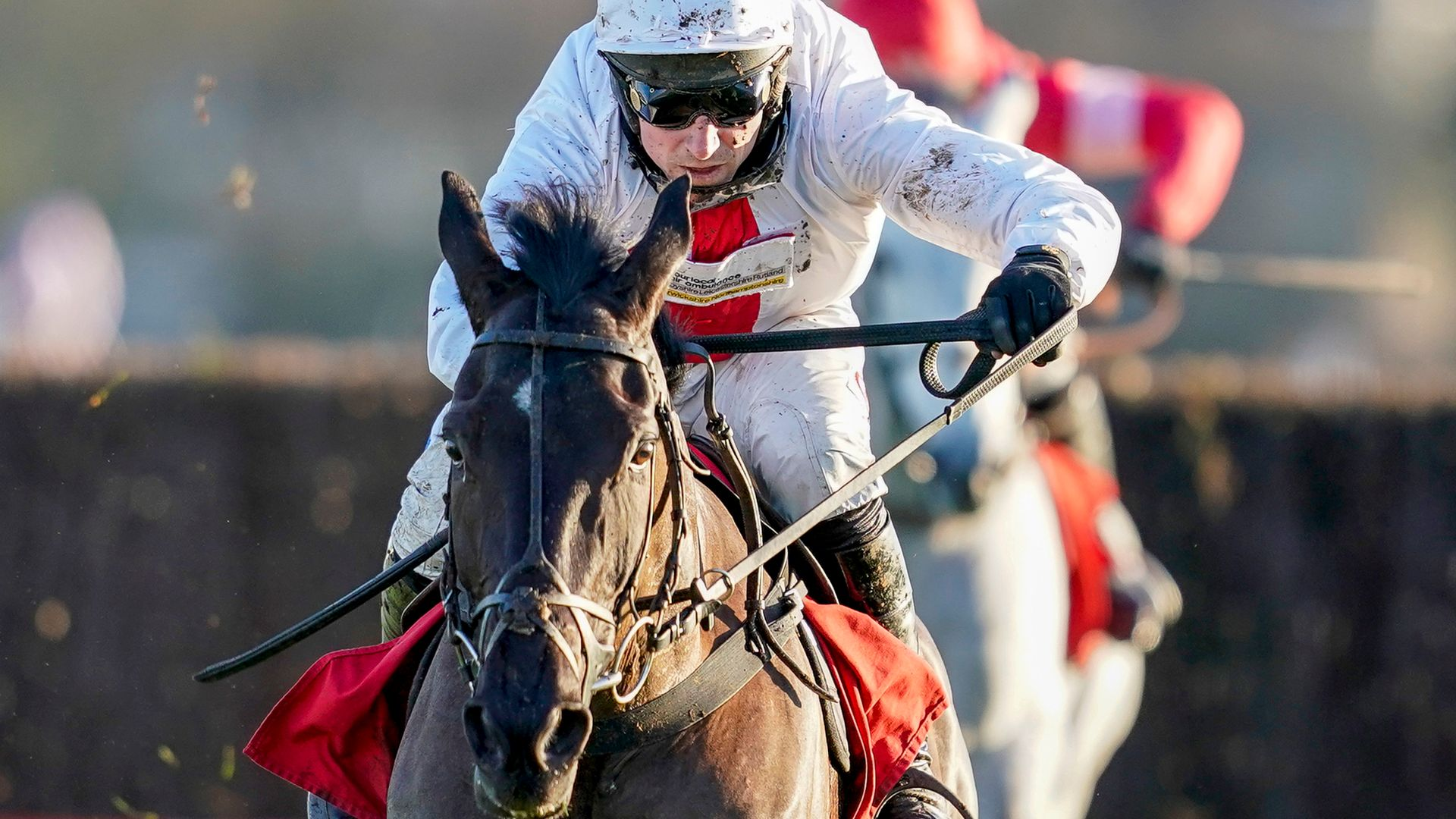 Skelton sends Nube to Punchestown - sky sports