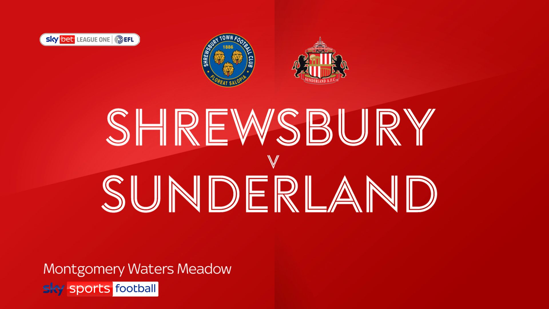Chapman stars as Shrewsbury beat Sunderland