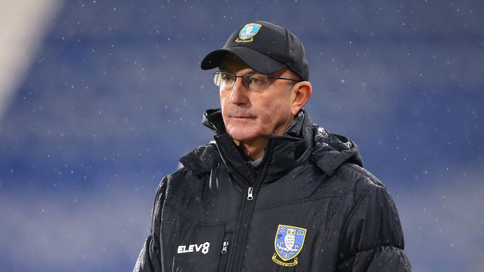 Rows over Sheffield Wed transfer plans led to Pulis axe