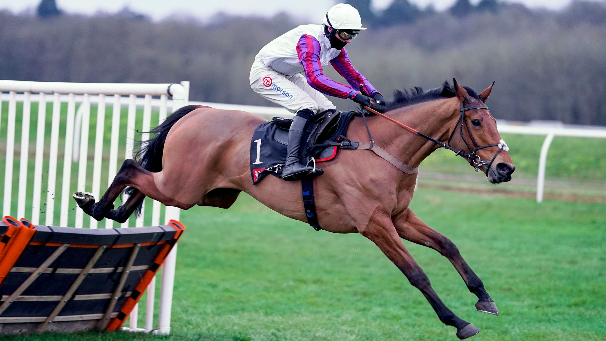 challow hurdle betting sites