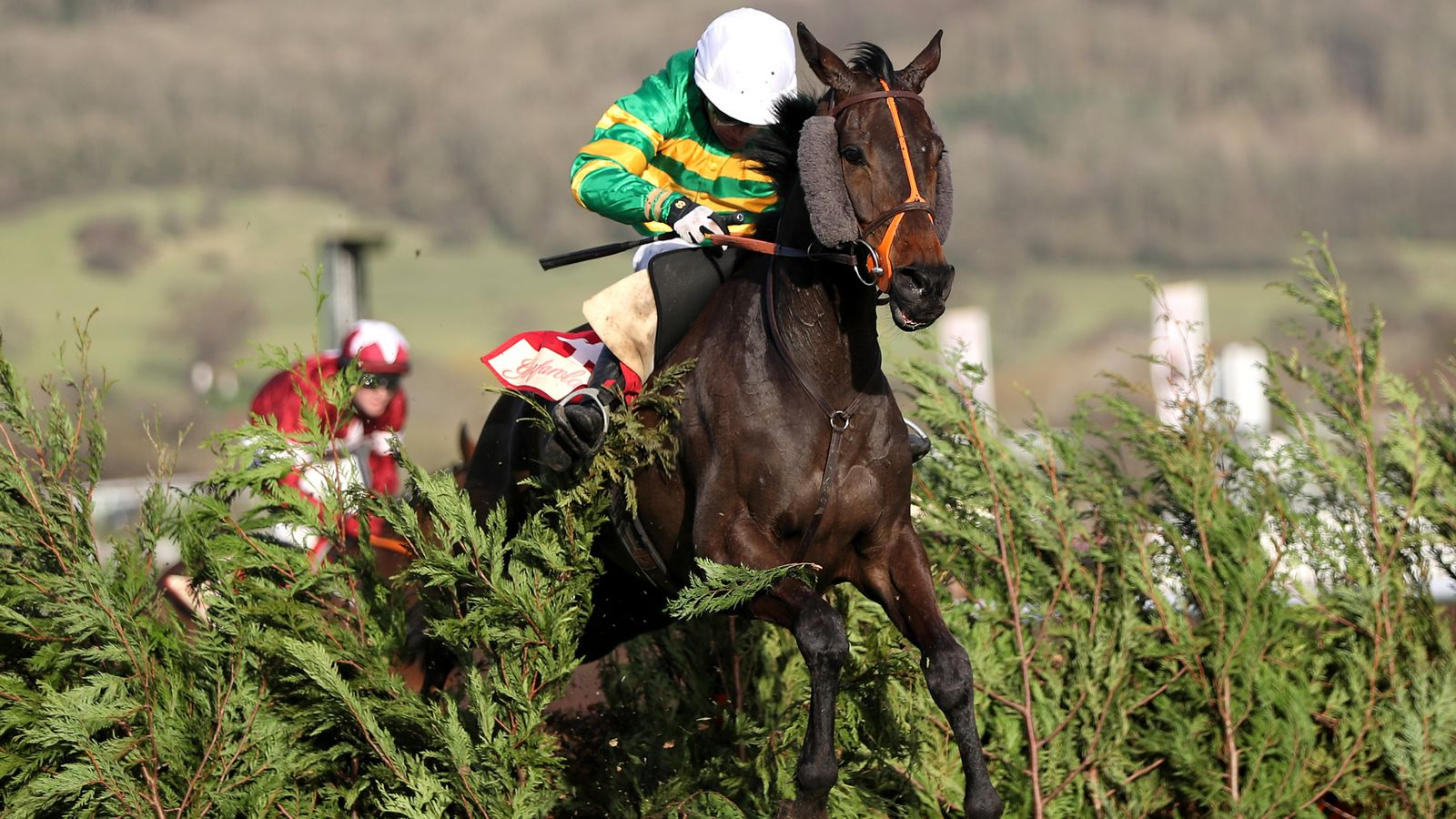 Holiday setback sidelines Easysland until the new year
