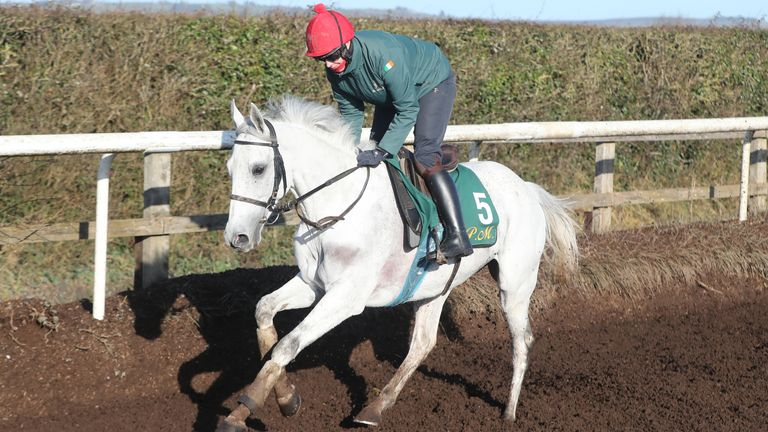 Elimay and jockey Rachel Robins during the visit to Willie Mullins' stables in Closutton,