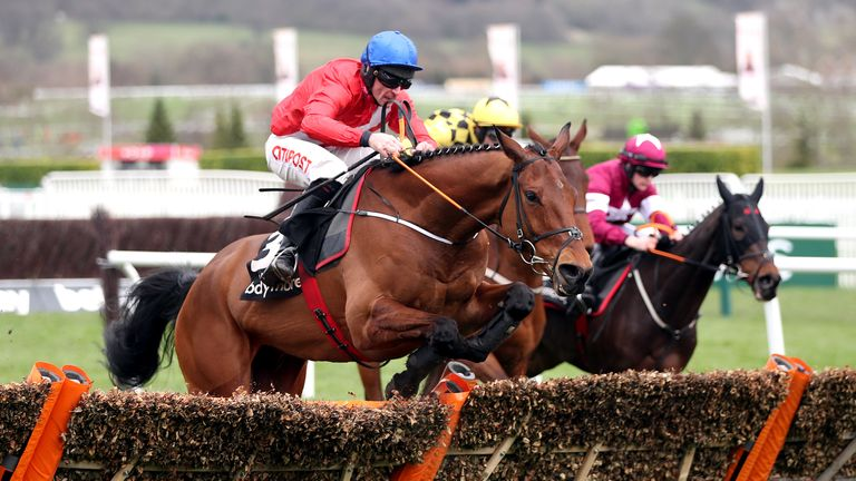 Envoi Allen is looking for his third Cheltenham Festival success after winning the Champion Bumper and the Ballymore Novices' Hurdle