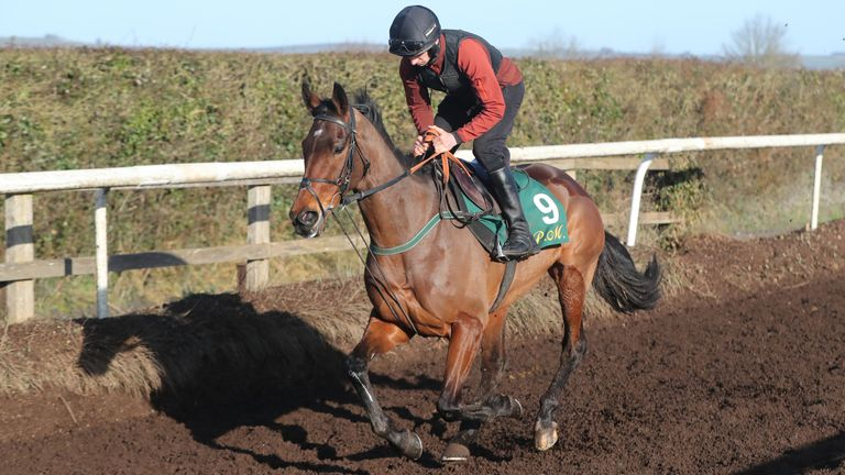Kilcruit and jockey Patrick Mullins on the gallops during the visit to Willie Mullins' stables in Closutton, Ireland. Picture date: Monday February 12, 2021.