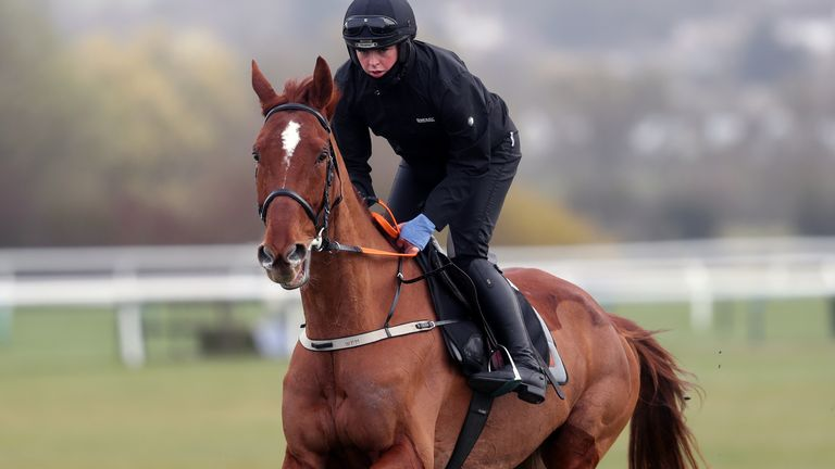 Monkfish on the gallops ahead of day two of the Cheltenham Festival at Cheltenham Racecourse. Picture date: Wednesday March 17, 2021.