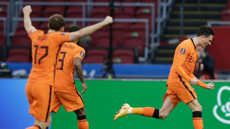 Steven Berghuis celebrates breaking the deadlock for the Netherlands
