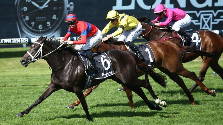 Verry Elleegant wins the Ranvet Stakes