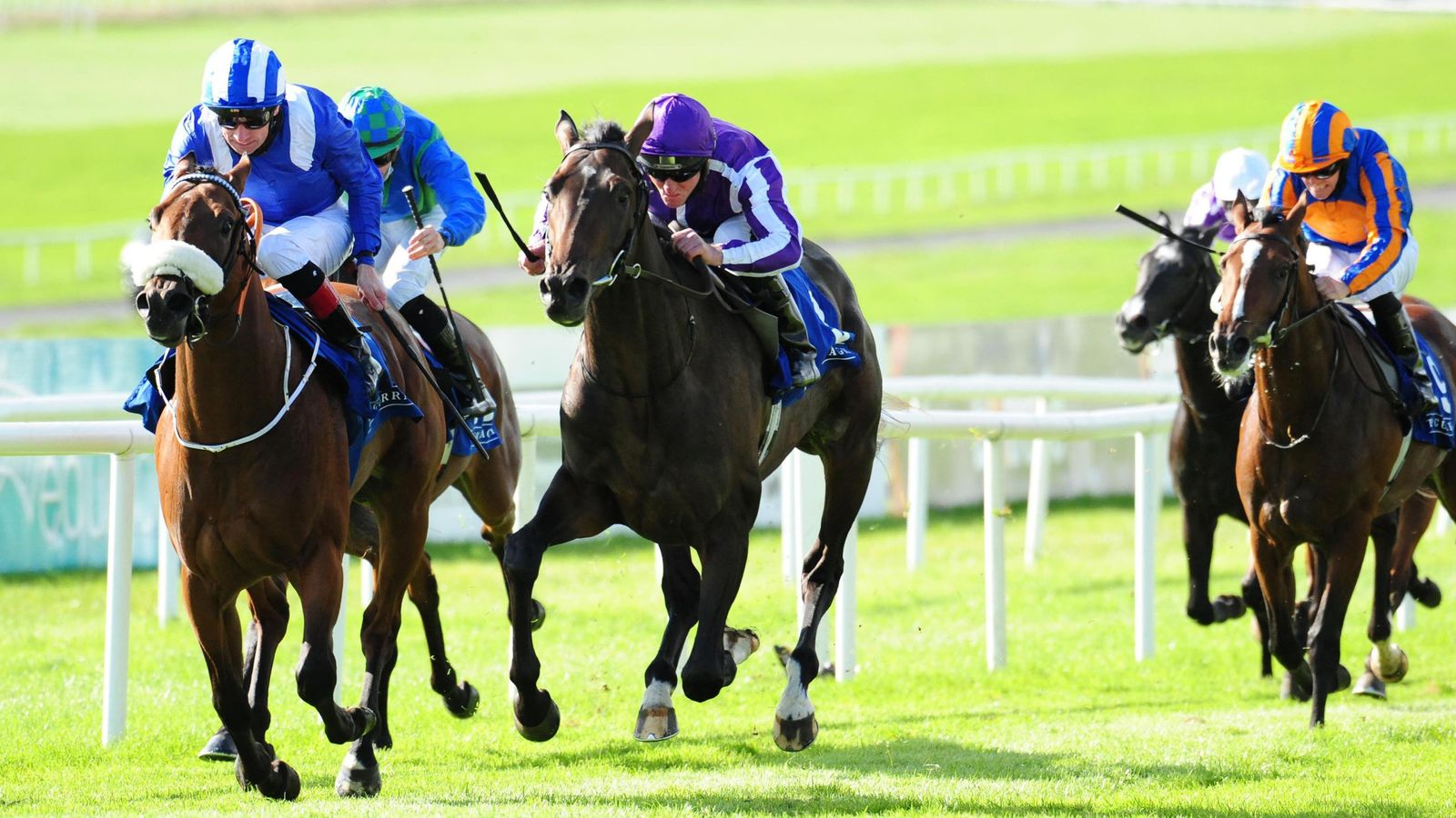 Monaasib makes return to action at Leopardstown