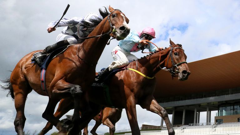 Helvic Dream (right) edges out Broome in the Tattersalls Gold Cup