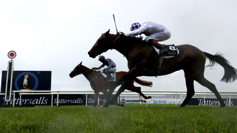 Mac Swiney ridden by Rory Cleary (far side) just gets the better of stablemate Poetic Flare