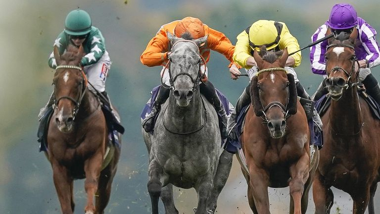 Skalleti (the grey) in action at Ascot